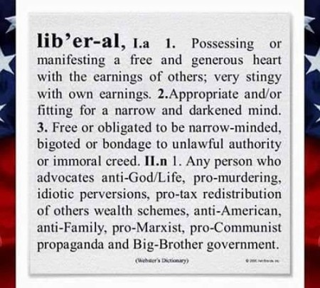 libtard defined